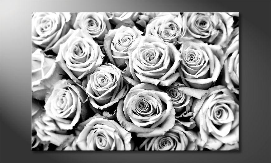 Décor moderne Creamy Roses