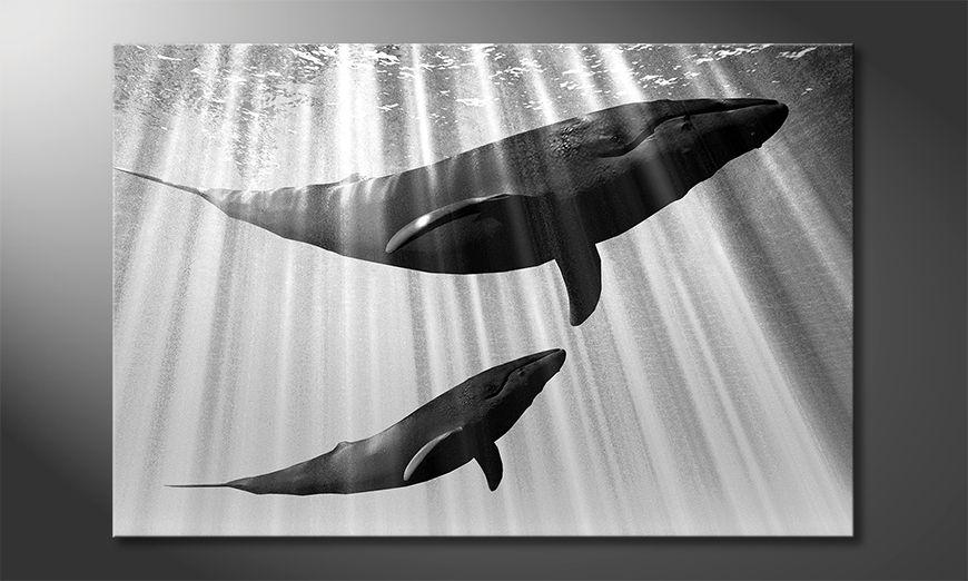 Décor moderne Whales