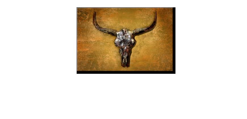 impression sur toile texas buffalo tableaux xxl. Black Bedroom Furniture Sets. Home Design Ideas