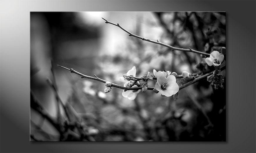 La belle peinture Beautiful Blossoms