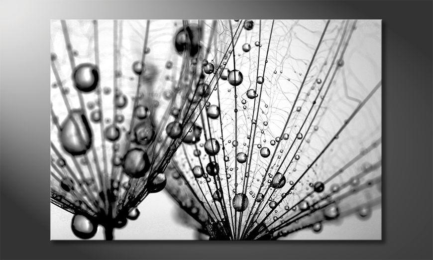 La belle peinture Dandelion Seed