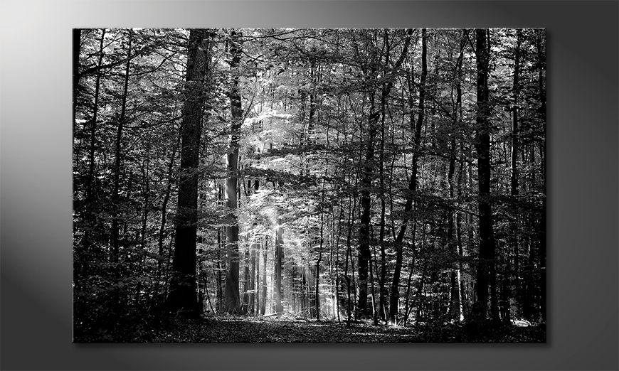 La belle peinture Into The Forest