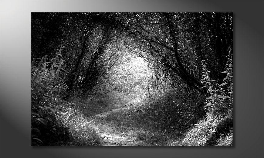 La belle peinture Way In Deep Forest