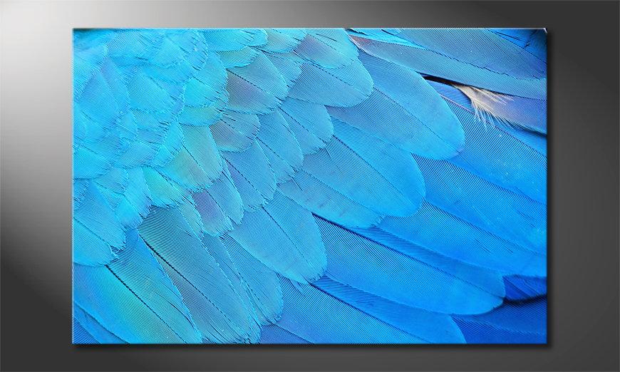 Le tableau mural Bird Feathers