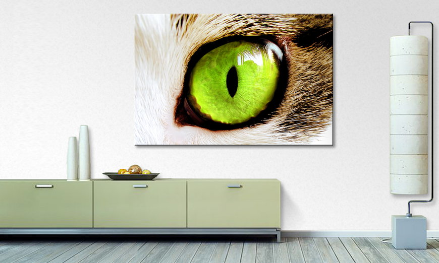Le tableau mural Cats �Eye