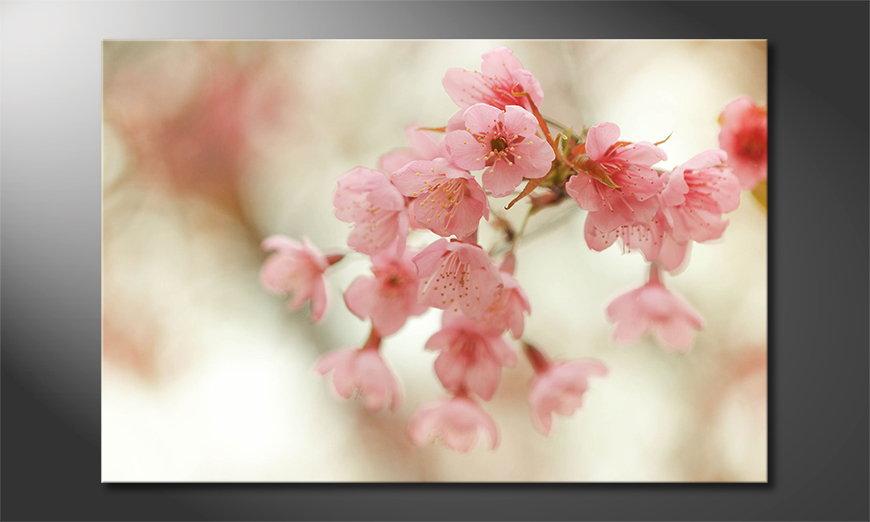 Le tableau mural Cherry Blossoms