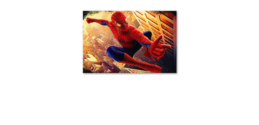 Le-tableau-mural-Instant-Spiderman