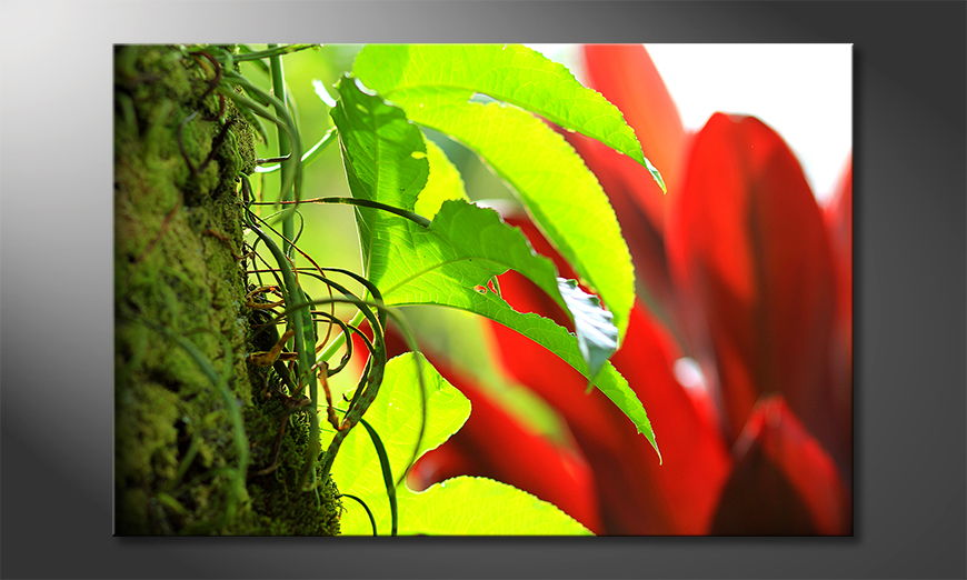 Le tableau mural Red Green Nature