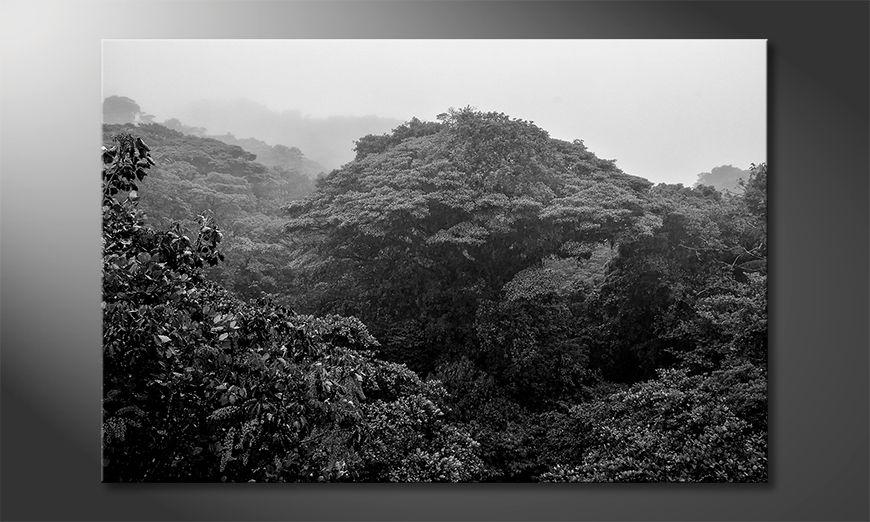 Les tableau imprimés Jungle