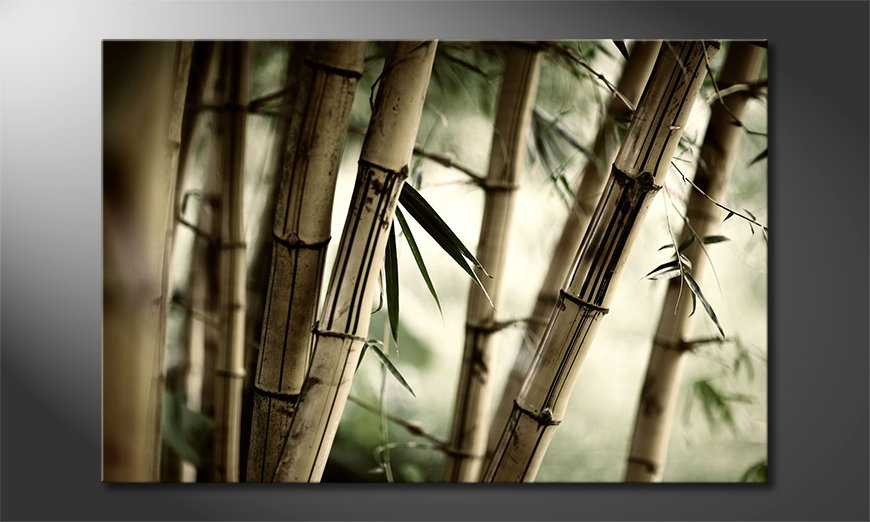 L'impression sur toile Bamboo Forest