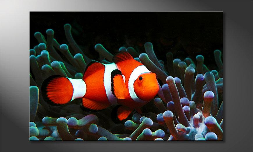 L'impression sur toile Nemo