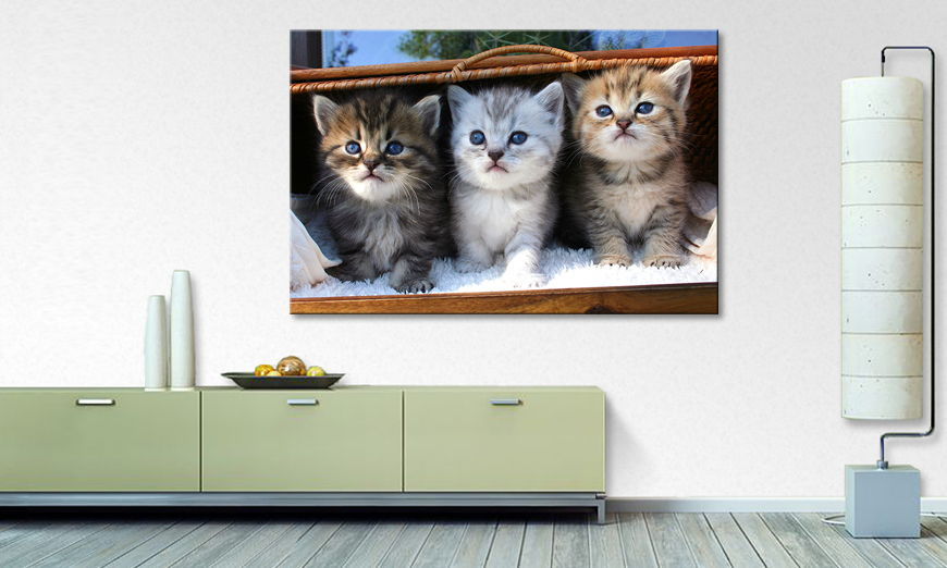 Limpression sur toile Three �little �friends