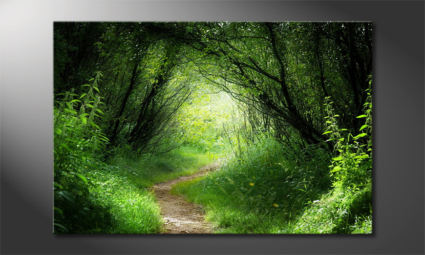Limpression-sur-toile-Way-into-the-Forest