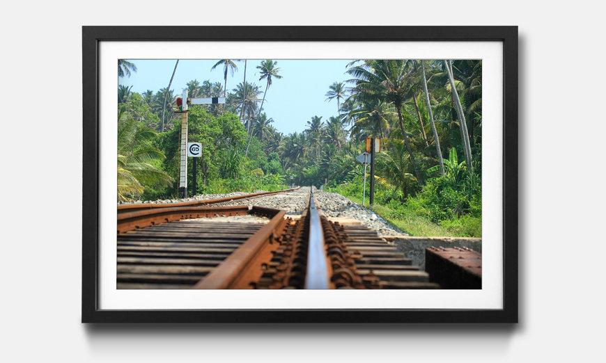 La reproduction encadrée Sri Lanka Rails