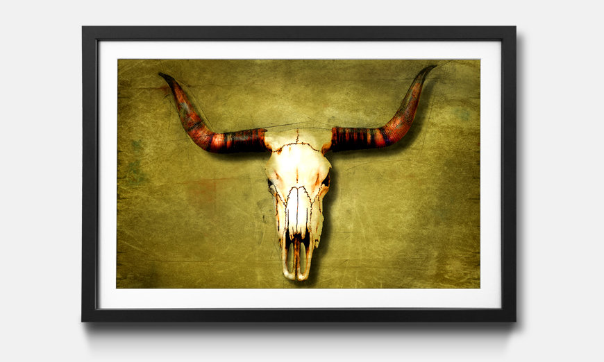 Le tableau encadré Buffalo Bull