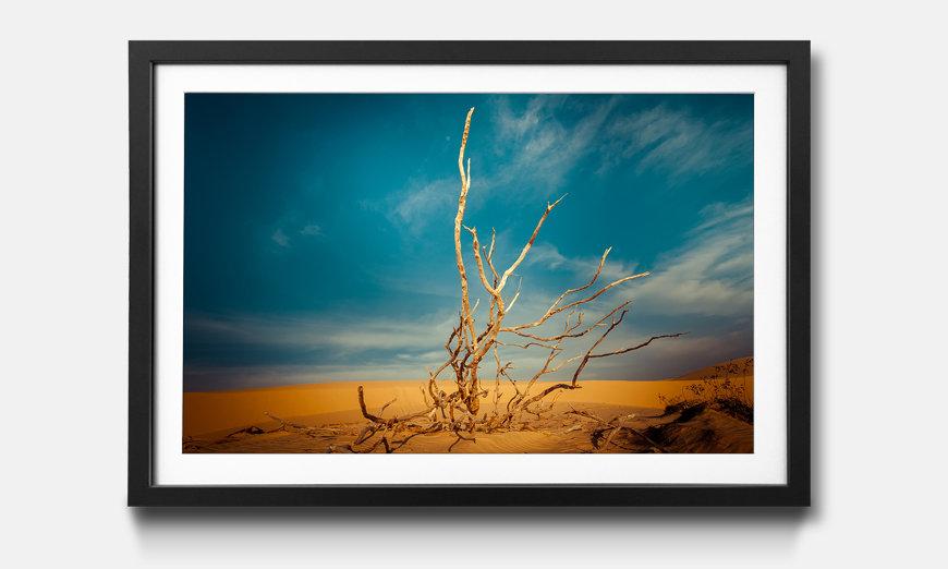 Tableau encadrée: Desert Landscape