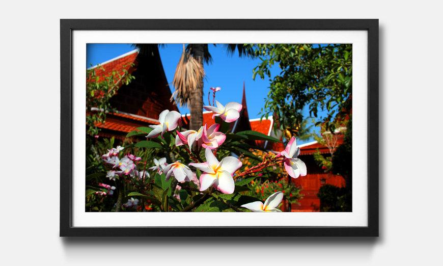 Tableau encadrée: Thai Day