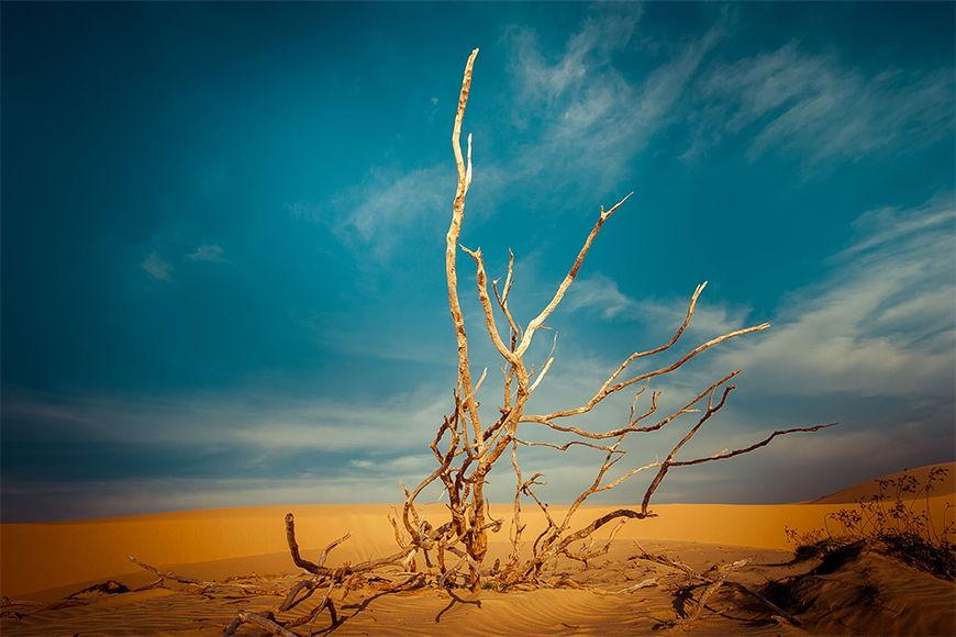 Intissé déco Paysage de désert 120x80cm et plus