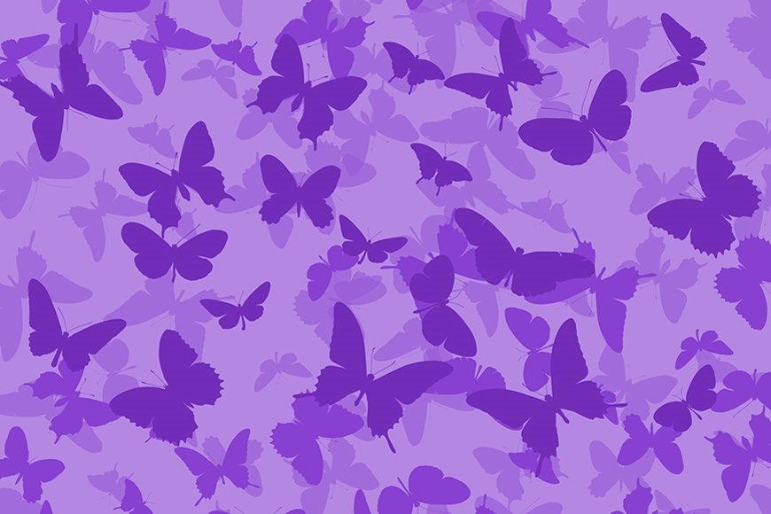 Papier intissé Papillons 120x80cm et plus